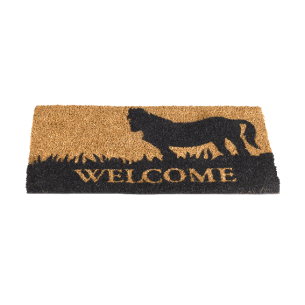 Wh-Welcome